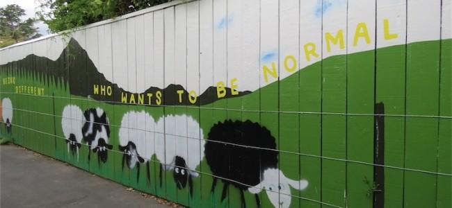 Social Sheep Mural - Blenheim